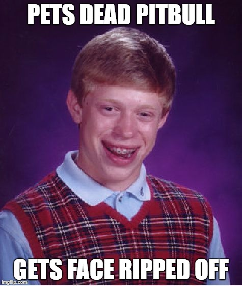 Bad Luck Brian Meme | PETS DEAD PITBULL GETS FACE RIPPED OFF | image tagged in memes,bad luck brian | made w/ Imgflip meme maker