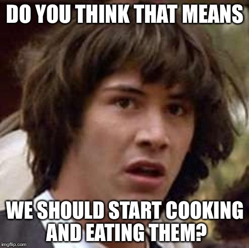 Conspiracy Keanu Meme | DO YOU THINK THAT MEANS WE SHOULD START COOKING AND EATING THEM? | image tagged in memes,conspiracy keanu | made w/ Imgflip meme maker