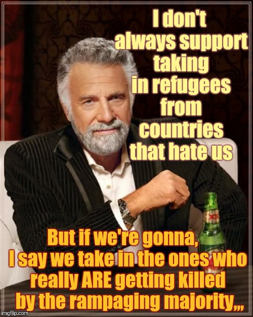 The Most Interesting Man In The World Meme | I don't always support taking in refugees from countries that hate us But if we're gonna,   I say we take in the ones who really ARE getting | image tagged in memes,the most interesting man in the world | made w/ Imgflip meme maker