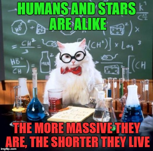 Chemistry Cat Meme | HUMANS AND STARS ARE ALIKE THE MORE MASSIVE THEY ARE, THE SHORTER THEY LIVE | image tagged in memes,chemistry cat,funny,universe,insult,physics | made w/ Imgflip meme maker