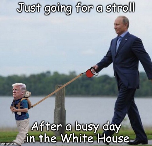 Putin's Pet | Just going for a stroll After a busy day in the White House | image tagged in trumpy | made w/ Imgflip meme maker