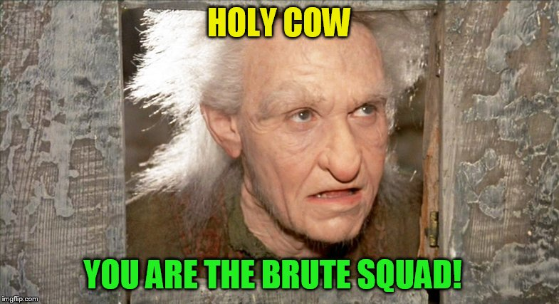 HOLY COW YOU ARE THE BRUTE SQUAD! | made w/ Imgflip meme maker
