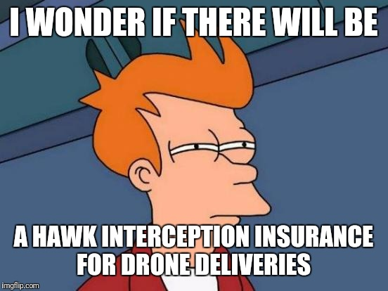 Futurama Fry Meme | I WONDER IF THERE WILL BE A HAWK INTERCEPTION INSURANCE FOR DRONE DELIVERIES | image tagged in memes,futurama fry | made w/ Imgflip meme maker