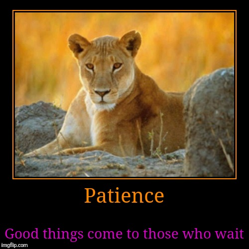 Patience | Good things come to those who wait | image tagged in funny,demotivationals | made w/ Imgflip demotivational maker