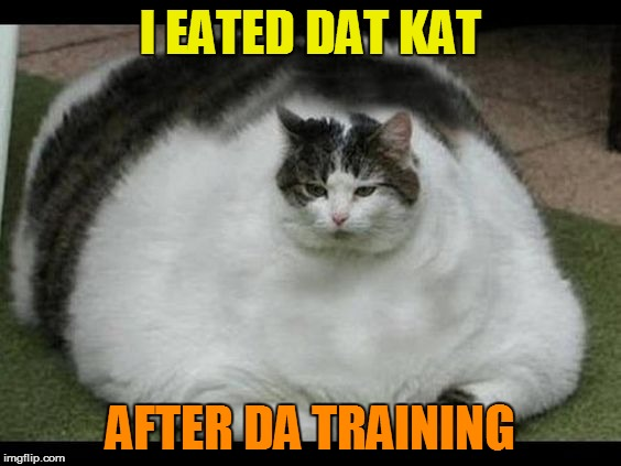 I EATED DAT KAT AFTER DA TRAINING | made w/ Imgflip meme maker