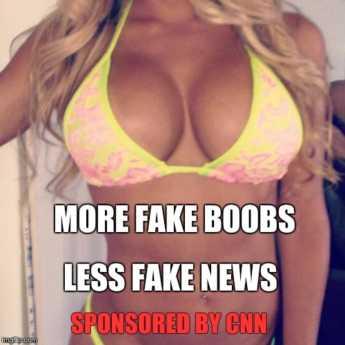 fake or fake? | MORE FAKE BOOBS LESS FAKE NEWS SPONSORED BY CNN | image tagged in cnn fake news | made w/ Imgflip meme maker