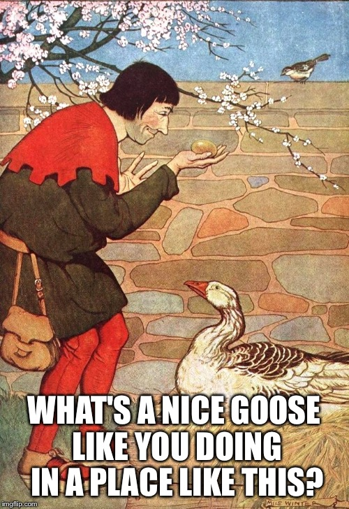 WHAT'S A NICE GOOSE LIKE YOU DOING IN A PLACE LIKE THIS? | made w/ Imgflip meme maker
