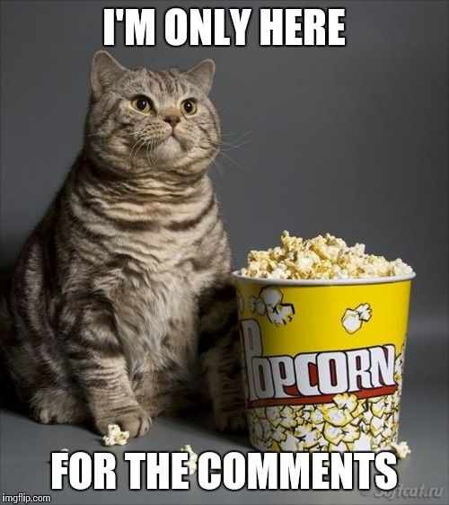 Cat eating popcorn | I'M ONLY HERE FOR THE COMMENTS | image tagged in cat eating popcorn | made w/ Imgflip meme maker