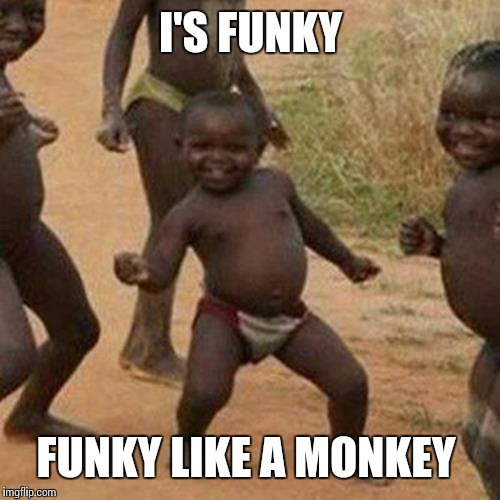 Third World Success Kid Meme | I'S FUNKY FUNKY LIKE A MONKEY | image tagged in memes,third world success kid | made w/ Imgflip meme maker