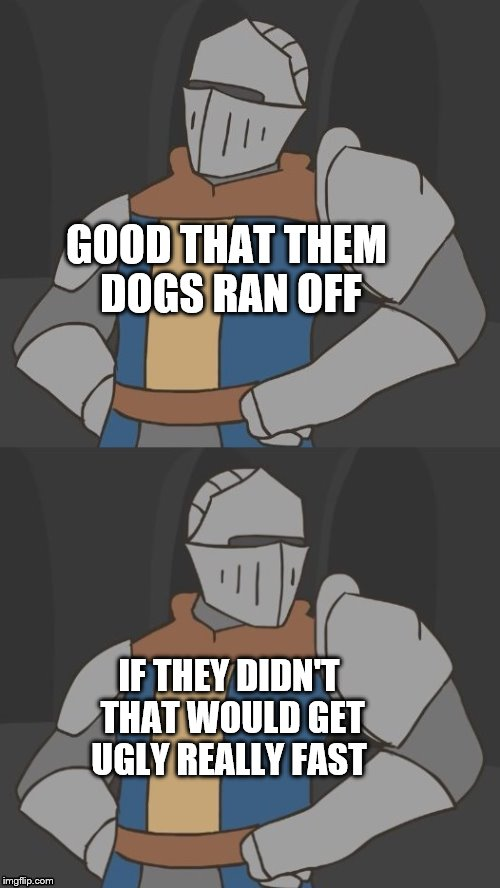 So what do we do now? | GOOD THAT THEM DOGS RAN OFF IF THEY DIDN'T THAT WOULD GET UGLY REALLY FAST | image tagged in so what do we do now | made w/ Imgflip meme maker