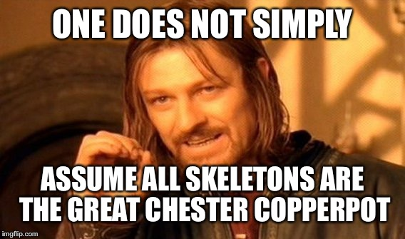 One Does Not Simply Meme | ONE DOES NOT SIMPLY ASSUME ALL SKELETONS ARE THE GREAT CHESTER COPPERPOT | image tagged in memes,one does not simply | made w/ Imgflip meme maker