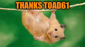 THANKS TOAD61 | made w/ Imgflip meme maker