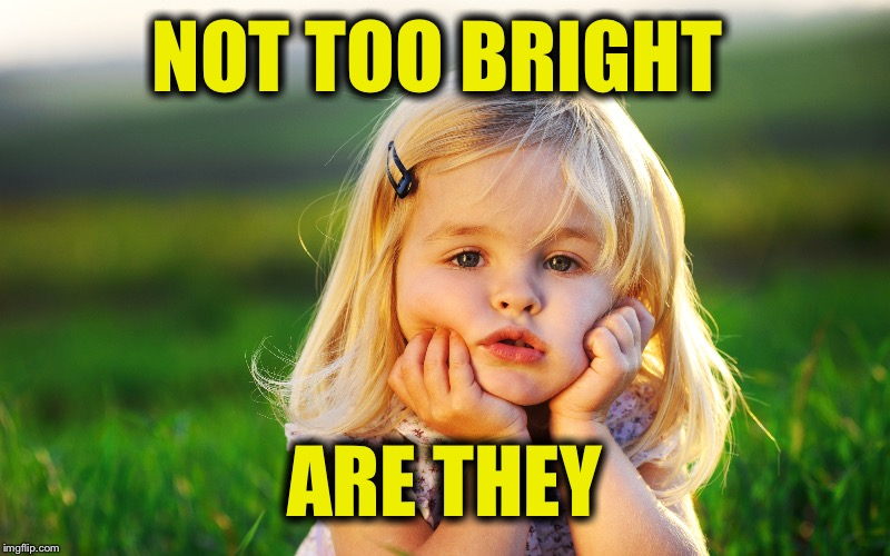 NOT TOO BRIGHT ARE THEY | made w/ Imgflip meme maker