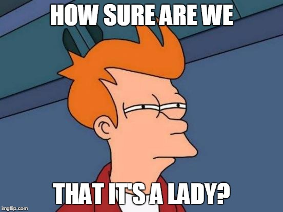 Futurama Fry Meme | HOW SURE ARE WE THAT IT'S A LADY? | image tagged in memes,futurama fry | made w/ Imgflip meme maker