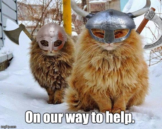 Vikings | On our way to help. | image tagged in vikings | made w/ Imgflip meme maker