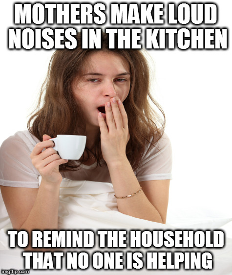 MOTHERS MAKE LOUD NOISES IN THE KITCHEN TO REMIND THE HOUSEHOLD THAT NO ONE IS HELPING | made w/ Imgflip meme maker
