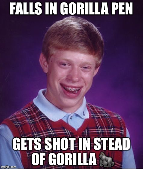 Bad Luck Brian Meme | FALLS IN GORILLA PEN GETS SHOT IN STEAD OF GORILLA  | image tagged in memes,bad luck brian | made w/ Imgflip meme maker