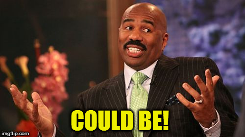 Steve Harvey Meme | COULD BE! | image tagged in memes,steve harvey | made w/ Imgflip meme maker