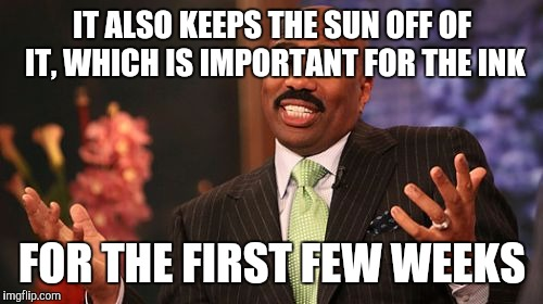 Steve Harvey Meme | IT ALSO KEEPS THE SUN OFF OF IT, WHICH IS IMPORTANT FOR THE INK FOR THE FIRST FEW WEEKS | image tagged in memes,steve harvey | made w/ Imgflip meme maker