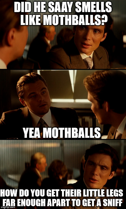 mothballs | DID HE SAAY SMELLS LIKE MOTHBALLS? YEA MOTHBALLS HOW DO YOU GET THEIR LITTLE LEGS FAR ENOUGH APART TO GET A SNIFF | image tagged in funny memes,inception,leonardo dicaprio | made w/ Imgflip meme maker