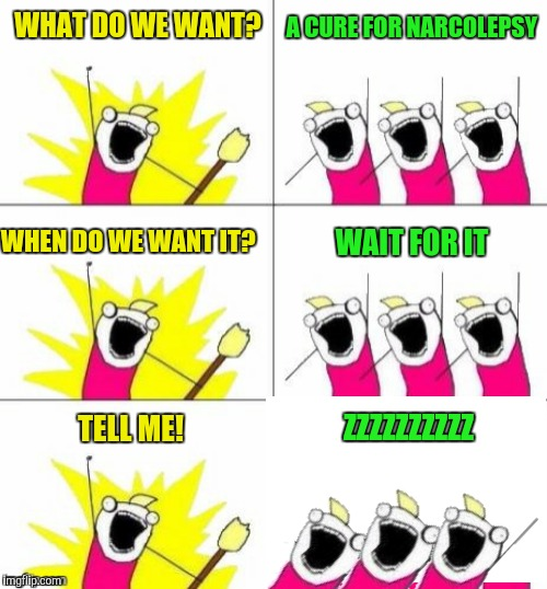 WHAT DO WE WANT? ZZZZZZZZZZ A CURE FOR NARCOLEPSY WHEN DO WE WANT IT? WAIT FOR IT TELL ME! | made w/ Imgflip meme maker