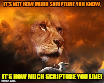 Scripture Knowledge | IT'S NOT HOW MUCH SCRIPTURE YOU KNOW, IT'S HOW MUCH SCRIPTURE YOU LIVE! | image tagged in scripture,bible,righteousness,action | made w/ Imgflip meme maker