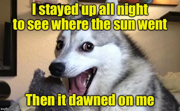 Pun dog - husky |  I stayed up all night to see where the sun went; Then it dawned on me | image tagged in pun dog - husky | made w/ Imgflip meme maker