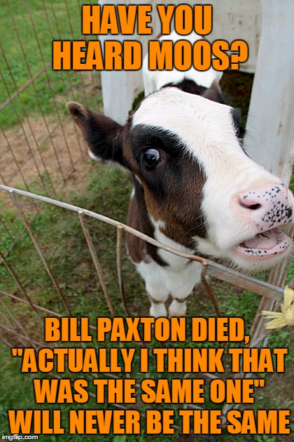 "Have You Heard The Moos | HAVE YOU HEARD MOOS? BILL PAXTON DIED, ""ACTUALLY I THINK THAT WAS THE SAME ONE"" WILL NEVER BE THE SAME 