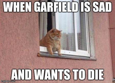 Fat Cat Imgflip