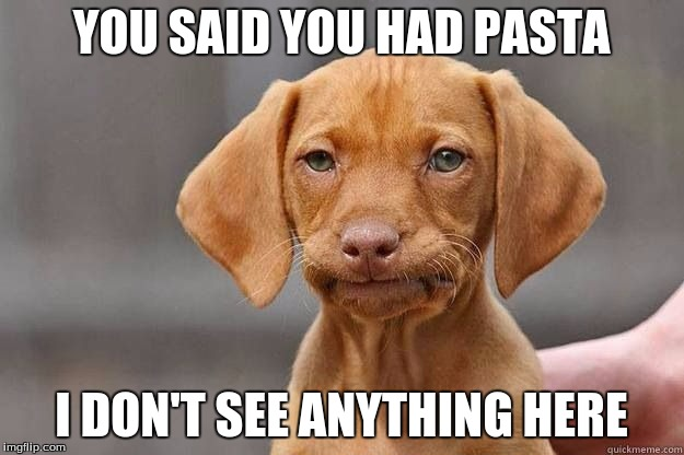 Disapointed Dog | YOU SAID YOU HAD PASTA I DON'T SEE ANYTHING HERE | image tagged in disapointed dog | made w/ Imgflip meme maker