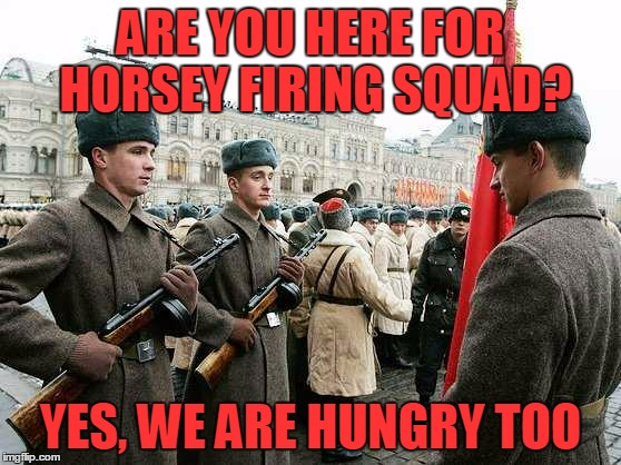 ARE YOU HERE FOR HORSEY FIRING SQUAD? YES, WE ARE HUNGRY TOO | made w/ Imgflip meme maker
