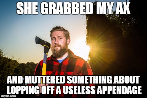 SHE GRABBED MY AX AND MUTTERED SOMETHING ABOUT LOPPING OFF A USELESS APPENDAGE | made w/ Imgflip meme maker