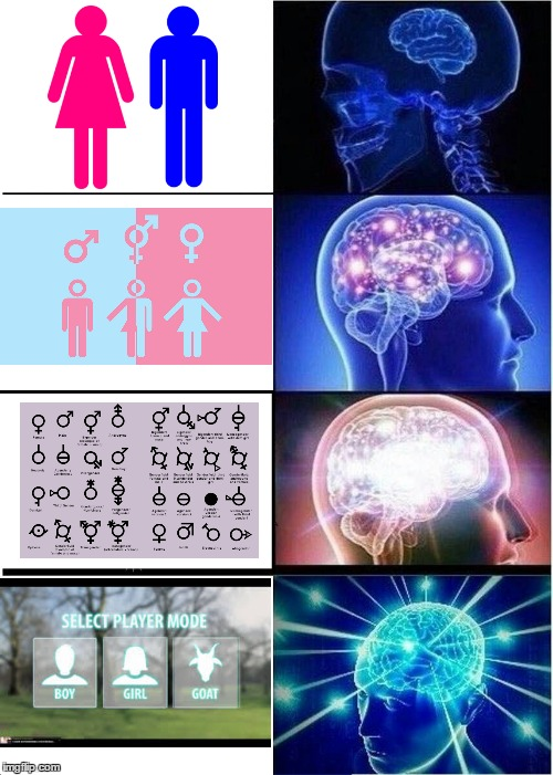 I sexually identify as a goat. | image tagged in expanding brain,genders,lgbt,memes,funny,goat | made w/ Imgflip meme maker