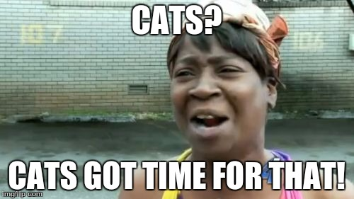Aint Nobody Got Time For That Meme | CATS? CATS GOT TIME FOR THAT! | image tagged in memes,aint nobody got time for that | made w/ Imgflip meme maker
