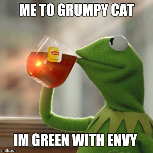 But Thats None Of My Business Meme | ME TO GRUMPY CAT IM GREEN WITH ENVY | image tagged in memes,but thats none of my business,kermit the frog | made w/ Imgflip meme maker