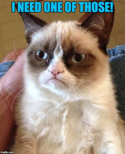 Grumpy Cat Meme | I NEED ONE OF THOSE! | image tagged in memes,grumpy cat | made w/ Imgflip meme maker