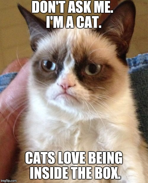 Grumpy Cat Meme | DON'T ASK ME. I'M A CAT. CATS LOVE BEING INSIDE THE BOX. | image tagged in memes,grumpy cat | made w/ Imgflip meme maker