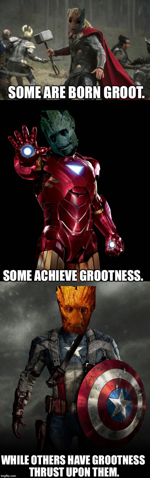 Grootness | SOME ARE BORN GROOT. SOME ACHIEVE GROOTNESS. WHILE OTHERS HAVE GROOTNESS THRUST UPON THEM. | image tagged in groot,memes,grootness | made w/ Imgflip meme maker