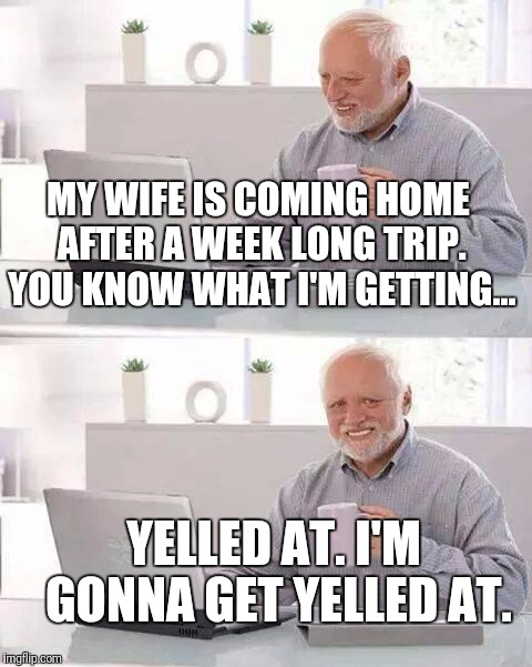 Probably a good thing I'm not married anymore! | MY WIFE IS COMING HOME AFTER A WEEK LONG TRIP. YOU KNOW WHAT I'M GETTING... YELLED AT. I'M GONNA GET YELLED AT. | image tagged in memes,hide the pain harold,marriage | made w/ Imgflip meme maker