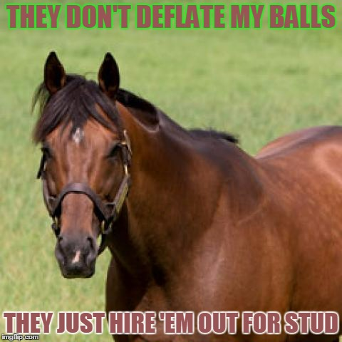 THEY DON'T DEFLATE MY BALLS THEY JUST HIRE 'EM OUT FOR STUD | made w/ Imgflip meme maker
