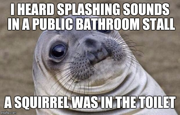 True story. | I HEARD SPLASHING SOUNDS IN A PUBLIC BATHROOM STALL A SQUIRREL WAS IN THE TOILET | image tagged in memes,awkward moment sealion | made w/ Imgflip meme maker