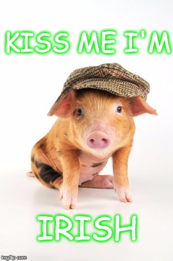 KISS ME I'M IRISH | image tagged in kiss,pig',irish,farm animals,piglet,st patrick's day | made w/ Imgflip meme maker