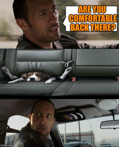 The Rock Driving Meme | ARE YOU COMFORTABLE BACK THERE? | image tagged in memes,the rock driving | made w/ Imgflip meme maker