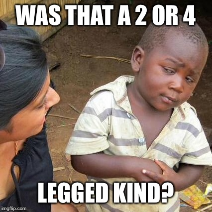 Third World Skeptical Kid Meme | WAS THAT A 2 OR 4 LEGGED KIND? | image tagged in memes,third world skeptical kid | made w/ Imgflip meme maker