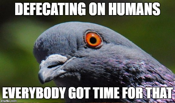 DEFECATING ON HUMANS EVERYBODY GOT TIME FOR THAT | made w/ Imgflip meme maker