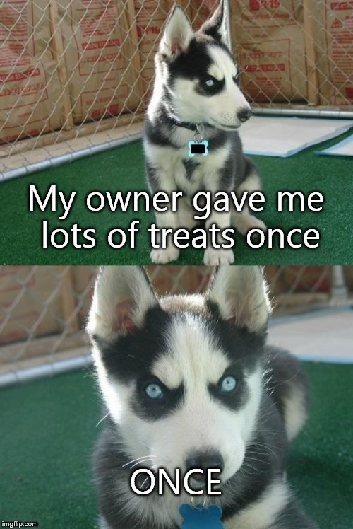 Insanity Puppy |  My owner gave me lots of treats once; ONCE | image tagged in memes,insanity puppy | made w/ Imgflip meme maker