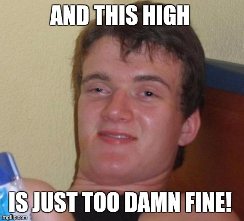 10 Guy Meme | AND THIS HIGH IS JUST TOO DAMN FINE! | image tagged in memes,10 guy | made w/ Imgflip meme maker