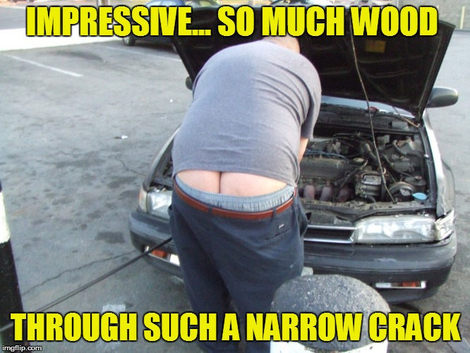 IMPRESSIVE... SO MUCH WOOD THROUGH SUCH A NARROW CRACK | made w/ Imgflip meme maker