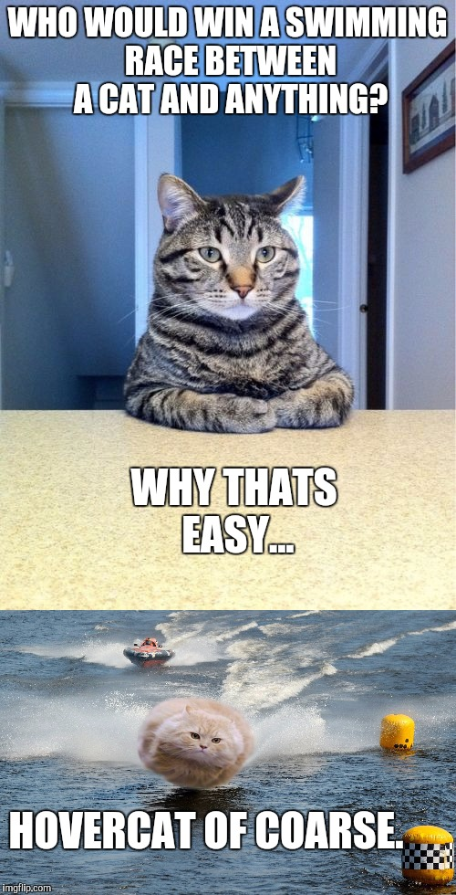 Hover-Cat at the Hydros | WHO WOULD WIN A SWIMMING RACE BETWEEN A CAT AND ANYTHING? HOVERCAT OF COARSE. WHY THATS EASY... | image tagged in hover-cat,hovercat,hydro racing,cats swimming,funny memes | made w/ Imgflip meme maker