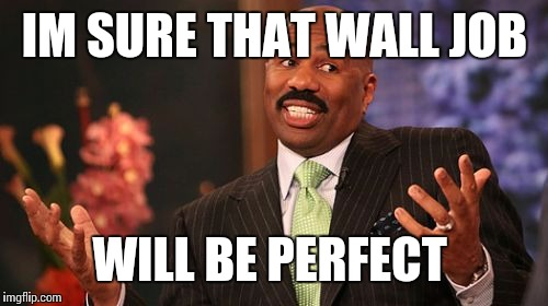 Steve Harvey Meme | IM SURE THAT WALL JOB WILL BE PERFECT | image tagged in memes,steve harvey | made w/ Imgflip meme maker